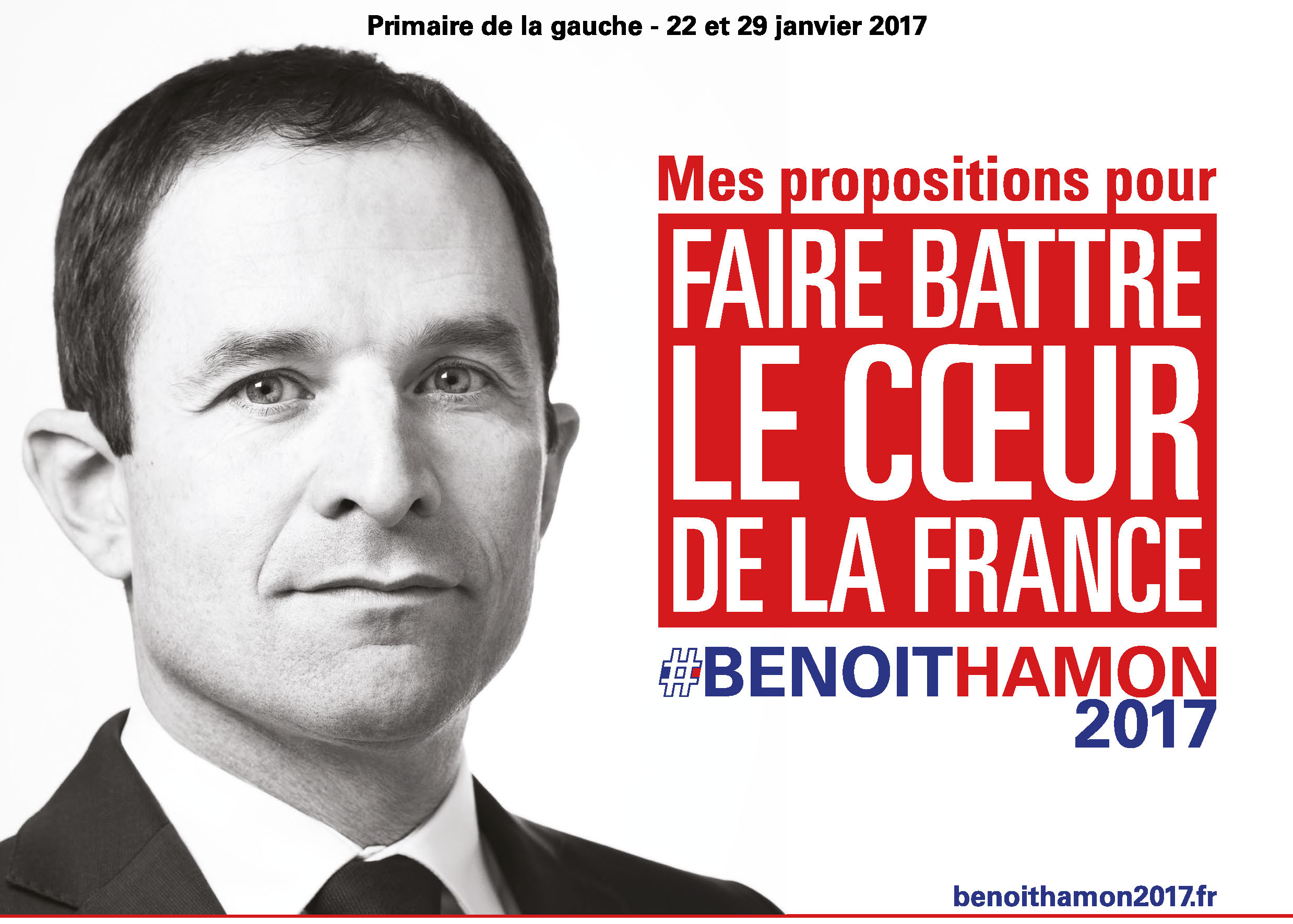 Benoit Hamon Propositions